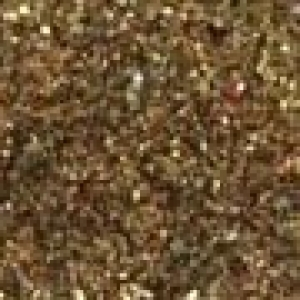 Snazaroo Glitter Dust Pot  (12ml) - Gold